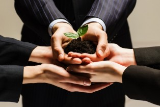 Synergie entre Business Angels et crowdfunding ?