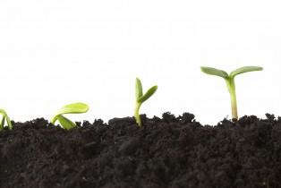 La finance participative en plein boom !